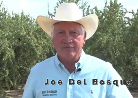 Joe Del Bosque